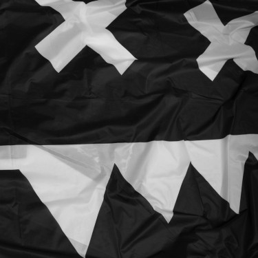 Eatbrain Flag 'Classic logo' 3x1,5 m